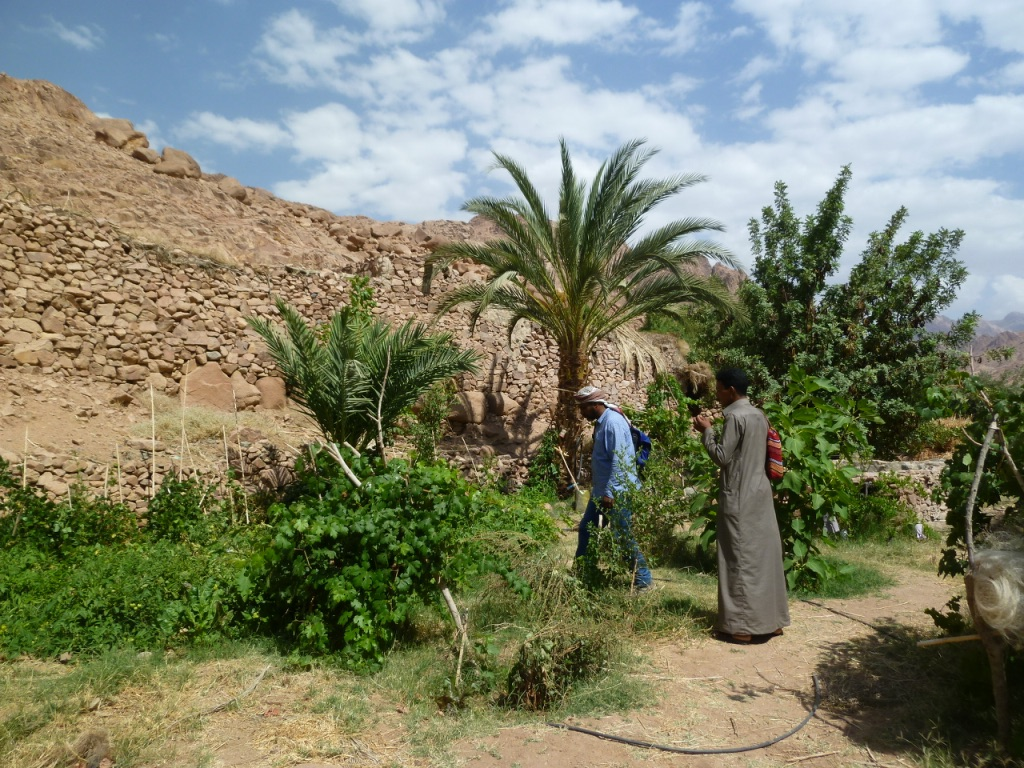Sponsorship of Specific Projects | Makhad Trust